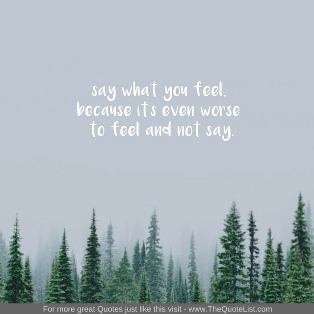 """Say what you feel, because its even worse to feel and not say"" - Unknown Author"