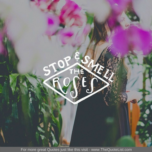 """Stop and smell the roses"" - Unknown Author"