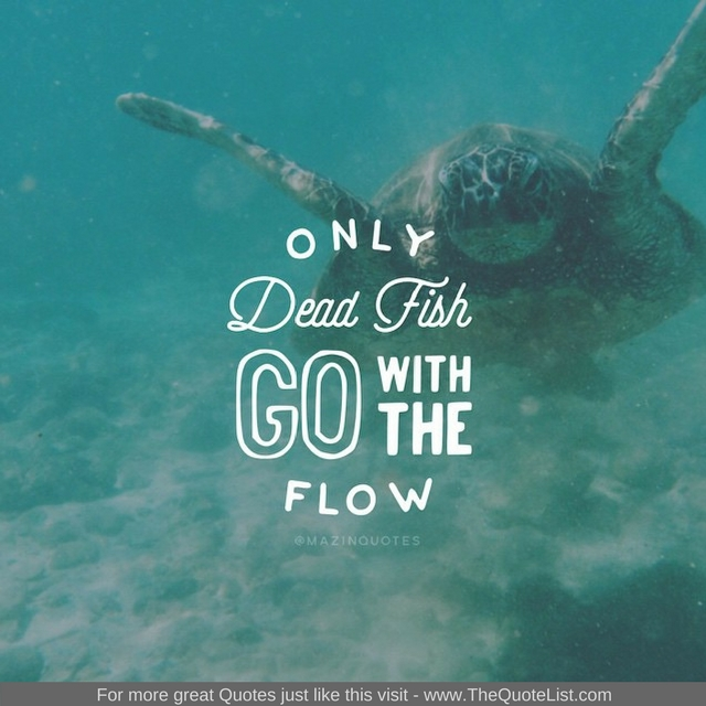 """Only dead fish go with the flow"" - Unknown Author"