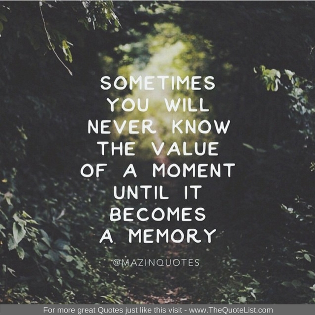 """""""Sometimes you will never know the value of a moment until it becomes a memory"""" - Unknown Author"""
