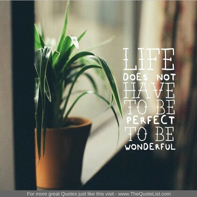 """""""Life does not have to be perfect to be wonderful"""" - Unknown Author"""