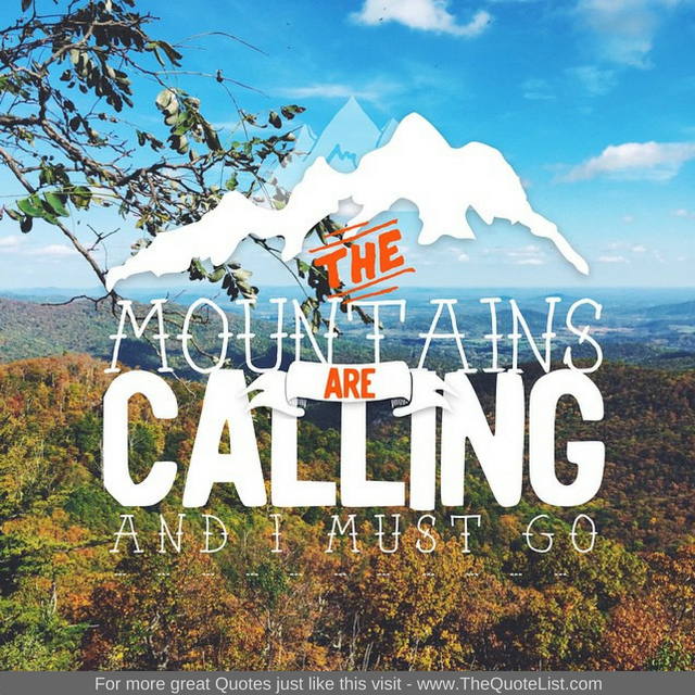 """The Mountains are calling and I must go"" by John Muir"