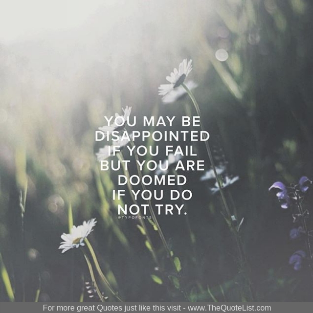 """""""You may be disappointed if you fail but you are doomed if you do not try"""""""